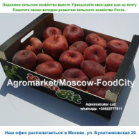 Agromarket/Moscow-FoodCity