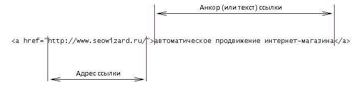 b_544665c230219.jpg