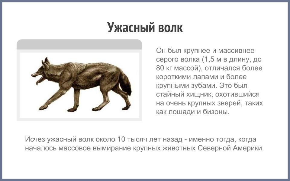 b_54aeda7150f95.jpg