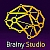 Brainy Studio LLC
